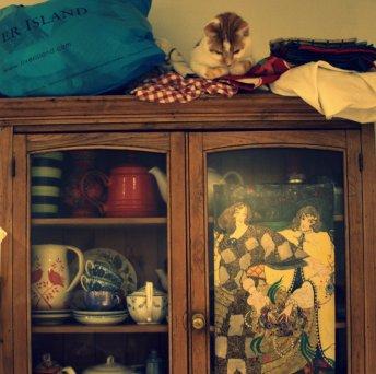 cat and dresser