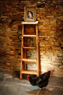 lomo ladder and chicken