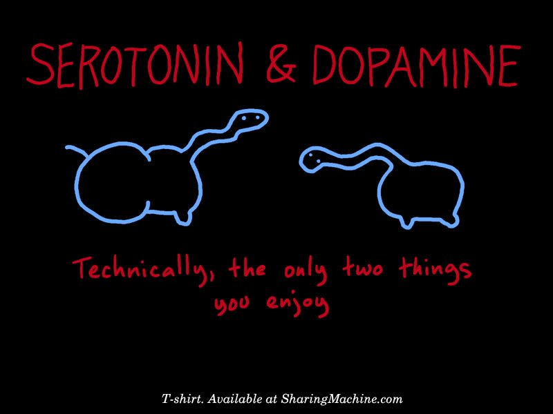 serotonin and dopamine