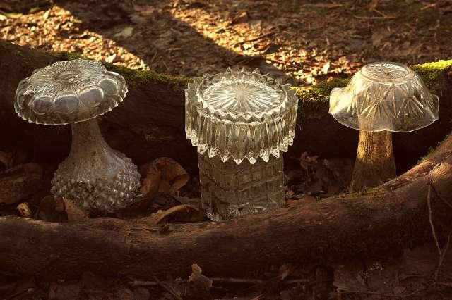 glass mushrooms sm